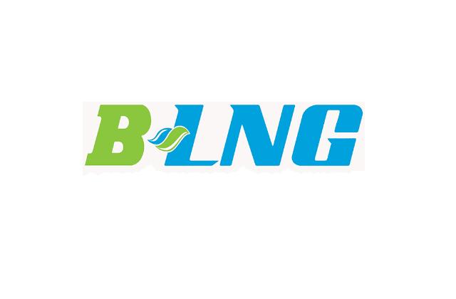 baidyanathlng